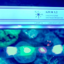 Azur 1.2