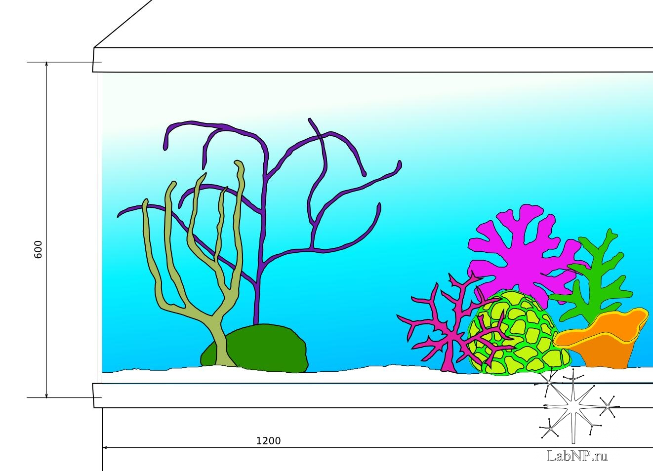 Проект аквариума в аренду