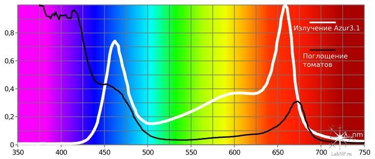 Azur 3.1-tomate spectrum